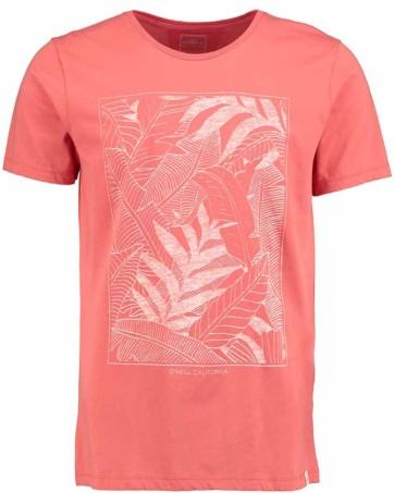 O'Neill Palms T-shirt burnt sienna