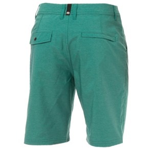 Animal Darwin Hugo boardshort vert  (US 36 - XL)