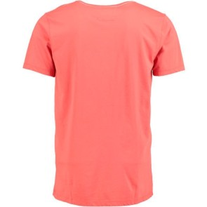 O'Neill Palms T-shirt burnt sienna